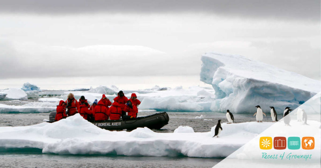 Antarctica-Expedition-Landing-Penguins-Featured Image-ws