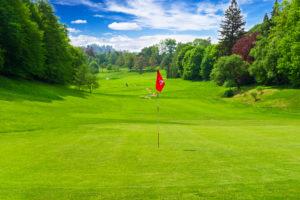 golf field. european landscape