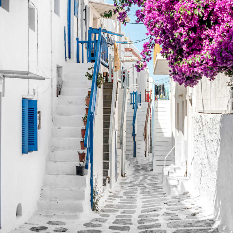Greece Alley White buildings Pink Flowers